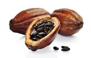 anti-aging essential oils picture 10