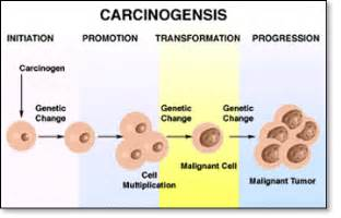 carcinogens for skin picture 9