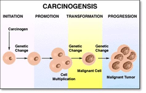 carcinogens for skin picture 1