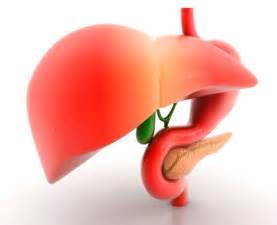 what are the symptoms of liver cancer picture 7