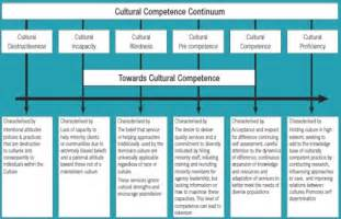 cultural competence continuum and aging picture 9