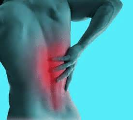 muscle back pain picture 1