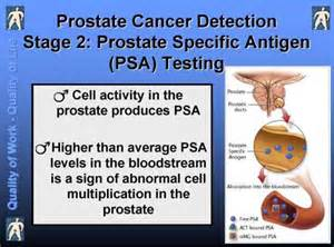 prostate 2007 picture 3