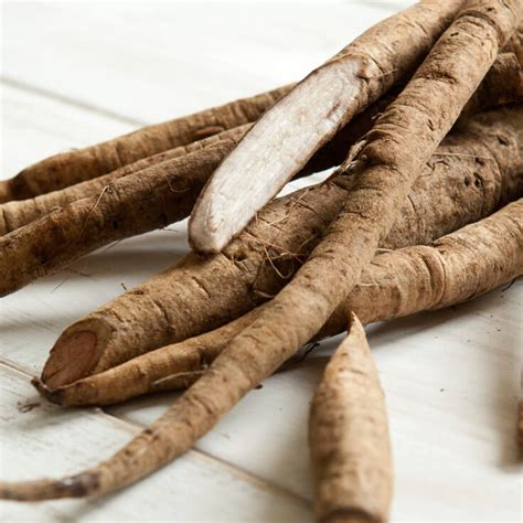 burdock root and cancer picture 14