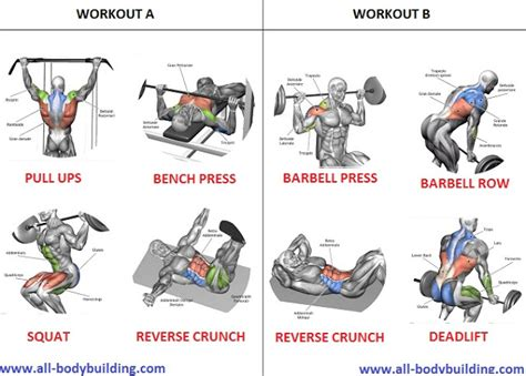 excercises to build muscle picture 14