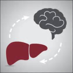 hepatic encephalopathy breast liver cancer picture 9