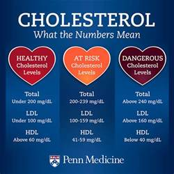 Meaning of cholesterol numbers picture 1