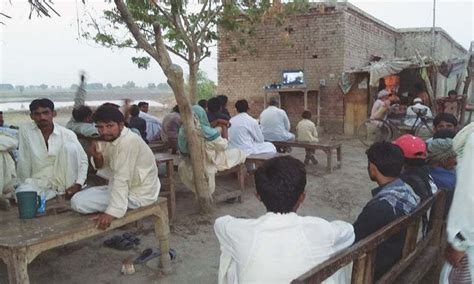 pollen tea shop in pakistan picture 15