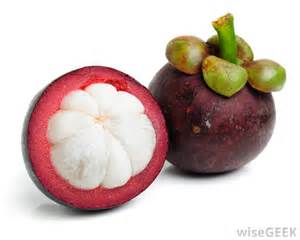 garcinia fruit extract picture 1