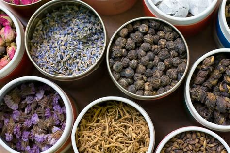 chinese herbal pills for ecoli picture 11