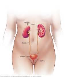 causes of loss of urine from the bladder picture 19