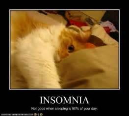 drawn to black insomnia picture 10