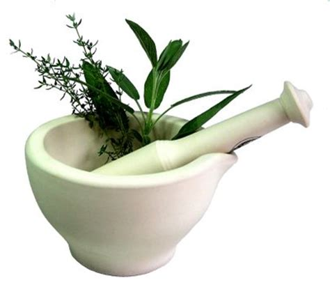 medical herbal treatments picture 11