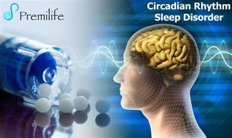 circadian rhythm sleep disorders picture 21