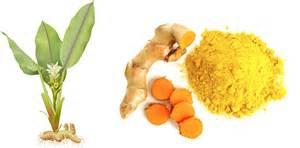 body health powder picture 2