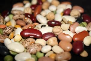 healthy beans picture 3