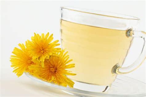 dandelion for libido picture 7
