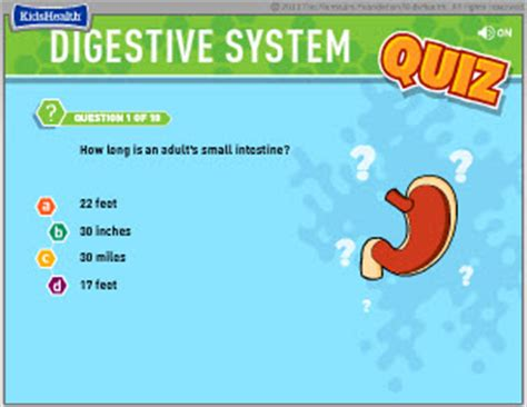 digestion questions picture 17