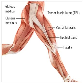 cure for muscle fasciae picture 5