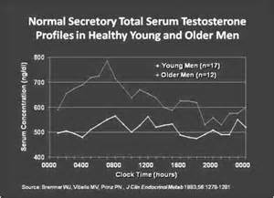 testosterone levels by time of day picture 1