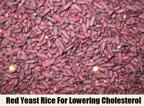 red rice yeast lowers cholestrol picture 1