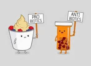 antibiotics and probiotics picture 7