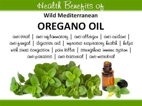 wild oregano cures hiv picture 1