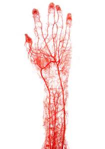 hitting the blood veins in hands what are picture 6