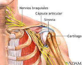 joint and nerve pain picture 2