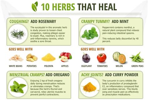 alternative medicine-homeopathic:remedies/herbs picture 3