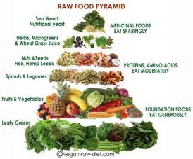 raw food diet and soy milk picture 14