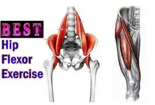 hip flexor muscle pull picture 14