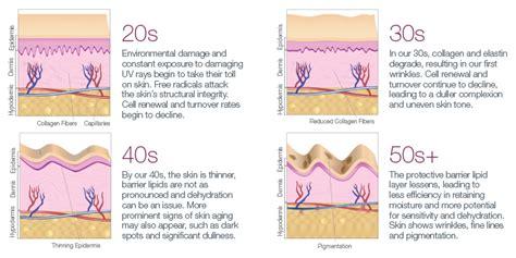 collagen vs cholesterol picture 7