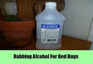 free herbal remedies for bugs picture 2
