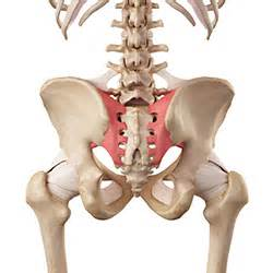 pain above left hip bone and sacro iliac joint picture 7