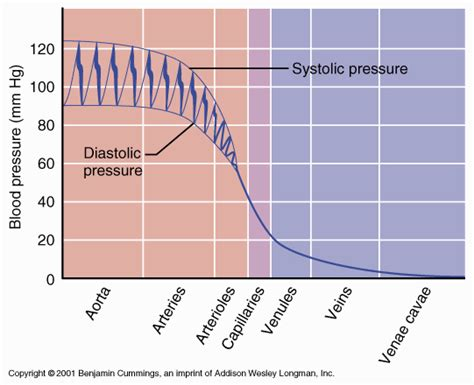 What is the change of blood pressure for picture 4