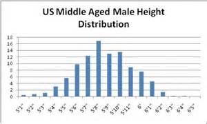 average size for white males picture 2