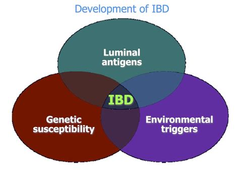 fungal etiology of inflammatory bowel disease picture 8