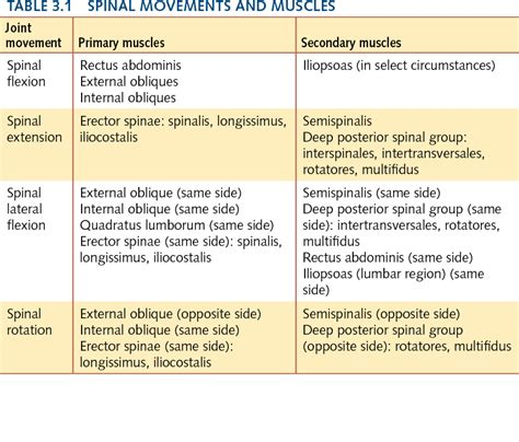 antagonist muscle pairs list picture 9