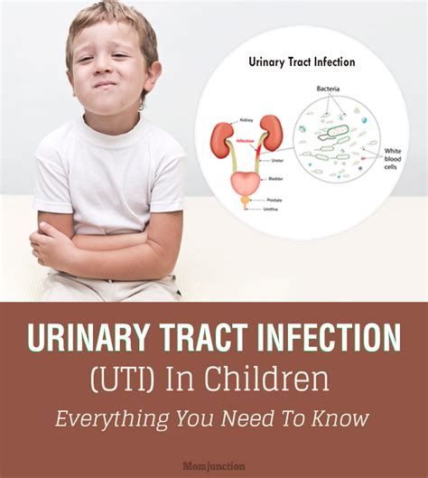 bladder and kidney infections in children picture 1