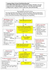 blood bank flow chart picture 9