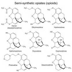 natural opioids picture 5