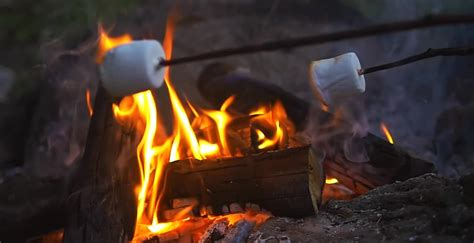 can you roast marshmellows on gel fire pit? picture 12