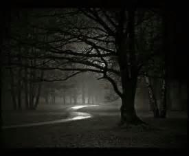 dark night pill picture 13
