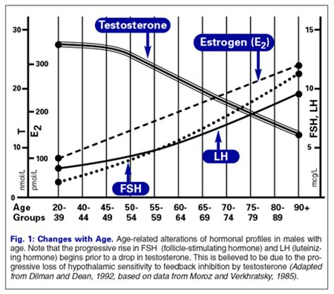 testosterone and estrogen levels picture 7