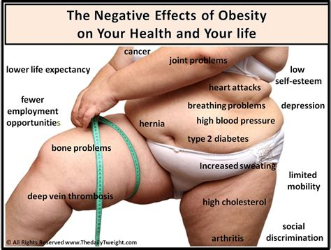 Cholesterol obesity picture 15