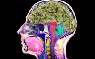 how to cleanse the brain with smoke picture 11