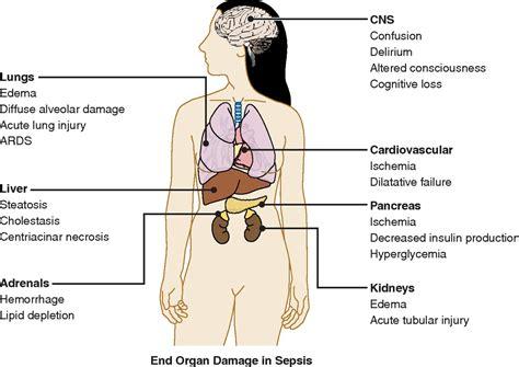 damaged liver symptoms picture 6