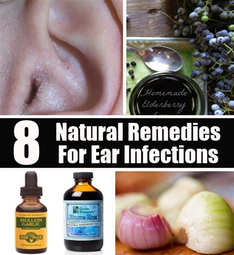 Herbal ear infection remedys picture 3