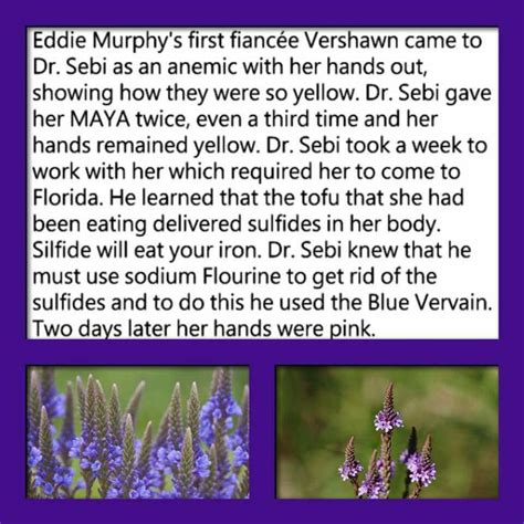 dr sebi on herbs for sexual health picture 7